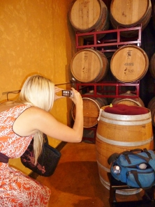 Woodinville Winery Tour