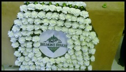 The Carnation Blanket Belmont Stakes