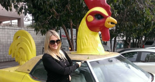 Shannon Truax and Tommy Kendall's Chicken Car