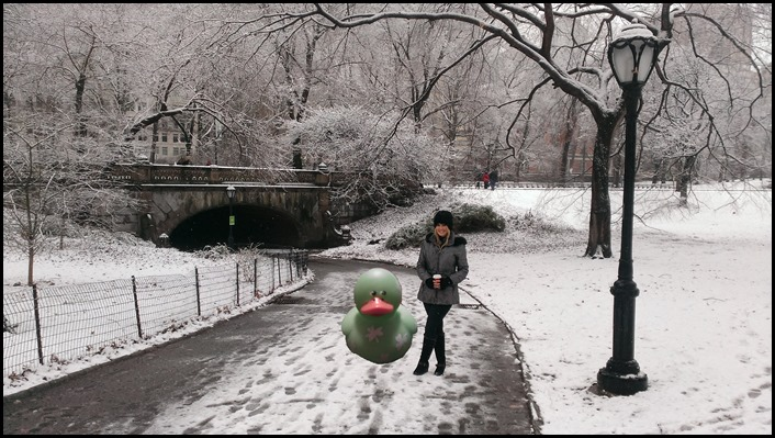 Snow in Central Park Shannon Truax