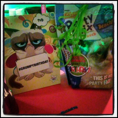 Grumpy Cat birthday party in NYC