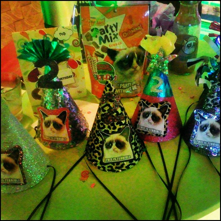 Grumpy Cat party hats made by Kristen Blush: Blushphoto.net